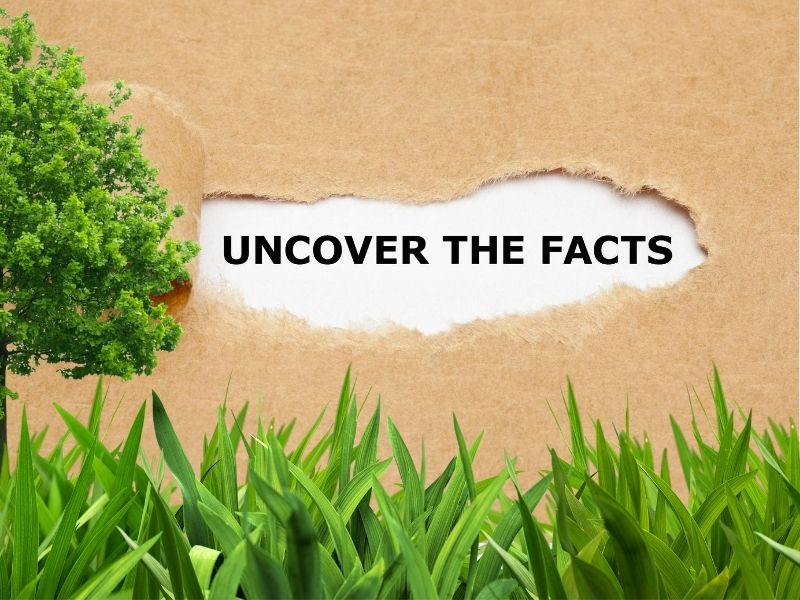 Fun Lawn Facts