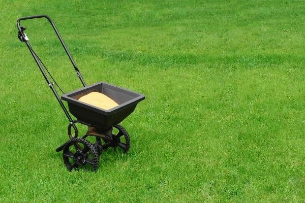 Intro to Lawn Fertilization