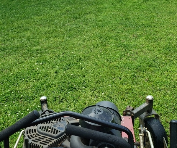 A Riverview Turfworks employee in the process of mowing thick and green grass.