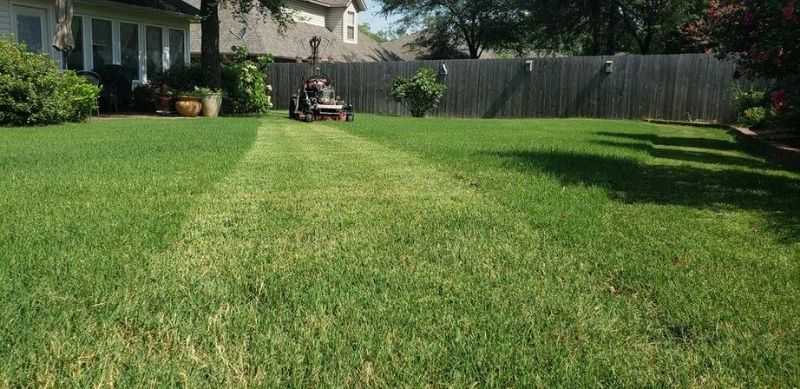 Mowing Fast Growing Bermuda Grass