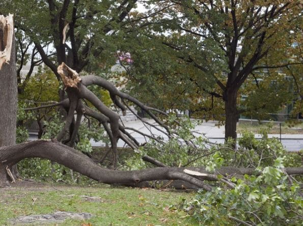 Storm Damage Cleanup In The Arkansas River Valley