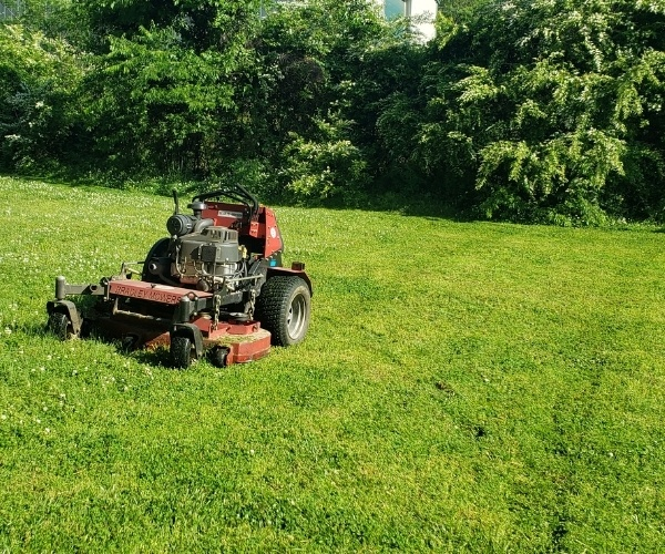 The Importance of Regular Lawn Mowing